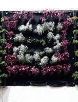 Curso de Jardines verticales o urbanos